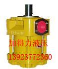 超低噪QT内啮合齿轮泵QT52-63F/A