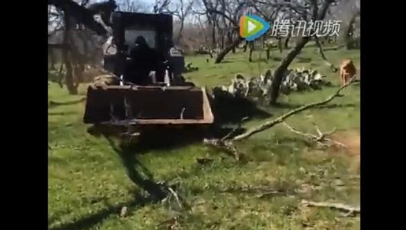 挖掘机被开出了要毁灭地球的感觉