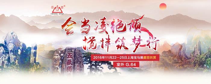 会当凌绝顶   搅拌筑梦行————2016年泰安岳首上海宝马展专题服务方案
