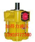 住友QT内啮合齿轮泵QT22-4F/A油泵