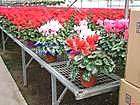 温室苗床网厂商,花卉苗床网厂家