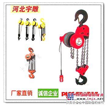 供应群吊专用电动葫芦|电动葫芦型号|电动葫芦现货