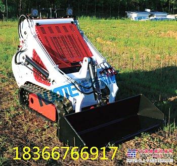 供应小型滑移装载机 多功能微型装载机厂家