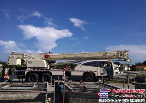 特雷克斯Toplift25汽车起重机交付菲律宾用户