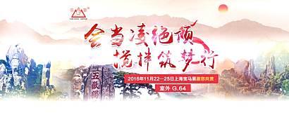 会当凌绝顶   搅拌筑梦行————2016年泰安岳首上海宝马展专题