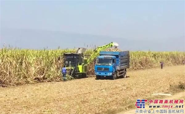 中联重科甘蔗机在大面积作业中表现优秀 中联重科发力拉美本地化