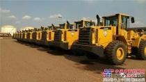 12台雷沃FL956H装载机通过龙口港集团验收并交付使用