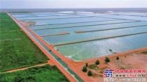 宝峨集团承接世界最大人工湿地处理厂扩建工程,阿曼油田采出水成功治理沙漠变绿洲