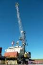 Qube公司为贝尔湾的港口订购利勃海尔LHM 420 起重机