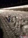 山猫:瑞雪兆丰年 清雪保平安