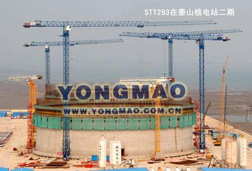 永茂STT293塔式起重机高清图 - 外观
