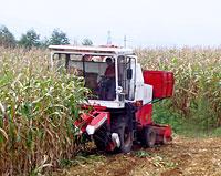 沃得农机4YZ-3玉米收割机高清图 - 外观