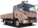 中国重汽ZZ1047B2813D1Y45载货汽车