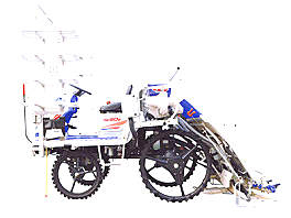井关PZ60DTLF水稻插秧机