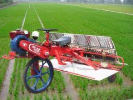 时风牌巧手系列乘坐式水稻插秧机水稻插秧机