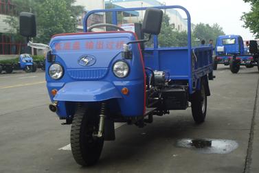 时风果园之星三轮运输车高清图 - 外观