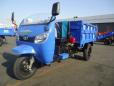 时风新高尔夫双座垃圾清理车三轮运输车高清图 - 外观