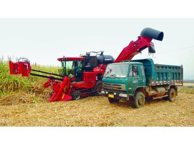 凯斯纽荷兰8000甘蔗收获机高清图 - 外观
