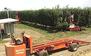 博远3GY-160搬运车