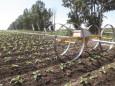 德邦大为IRRILI系列喷灌机高清图 - 外观