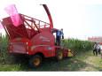 顶呱呱4QZ-2600青贮饲料收获机高清图 - 外观