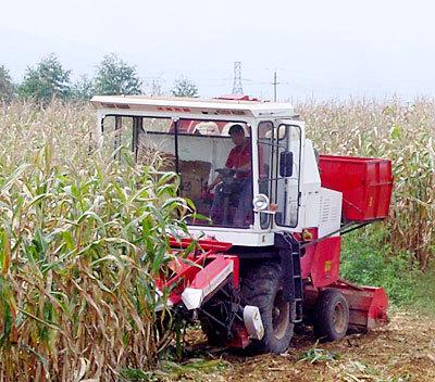 沃得农机4YZ-3玉米收获机