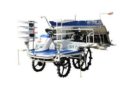 井关PZ系列PZ80水稻插秧机