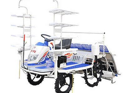 井关PZ系列PZ60DT水稻插秧机