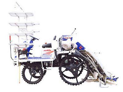 井关PZ系列PZ60DTLF水稻插秧机